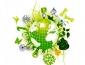 Международный день биологического разнообразия