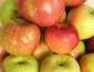 Яблочный Спас или Преображение Господне