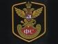 День сотрудников Государственной фельдъегерской службы в России