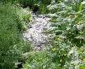 Агротуризм в Калужской области
