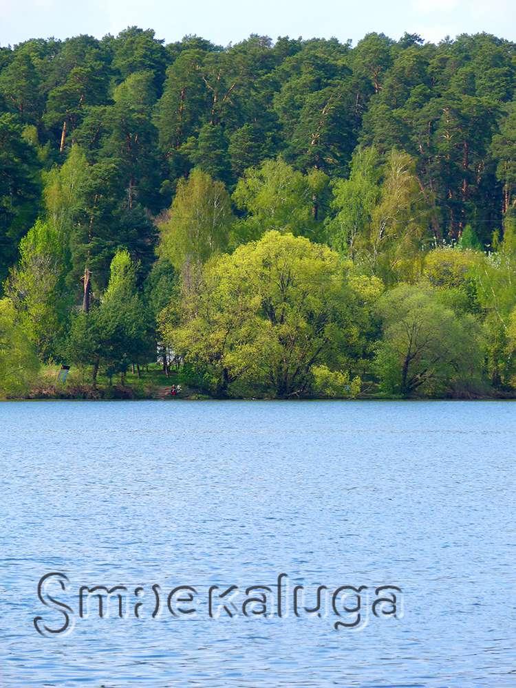 Купаться в Калуге можно в трёх водоёмах: Роспотребнадзор предоставил новые данные о санитарном состоянии рек, прудов и озёр