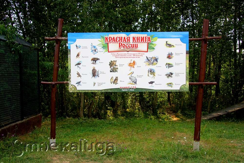 Парк Парк птиц Воробьи - Парки - Афиша