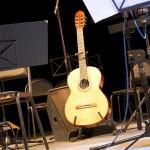 Мир гитары - 2014 фестиваль