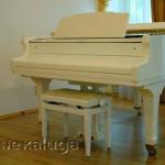 Рояль в творческом центре Туликова калуга