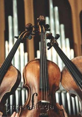 В Калуге продолжаются променад-концерты