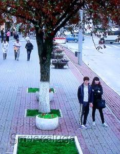 Изображение на экране (с камеры на улице Кирова) калуга