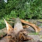 Парк культуры и отдыха ураган