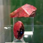 Из царской коллекции калуга