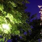Площадь Победы калуга