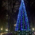 Новогодняя ёлка в Центральном парке культуры и отдыха калуга