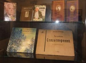 в доме-музее чижевского калуга