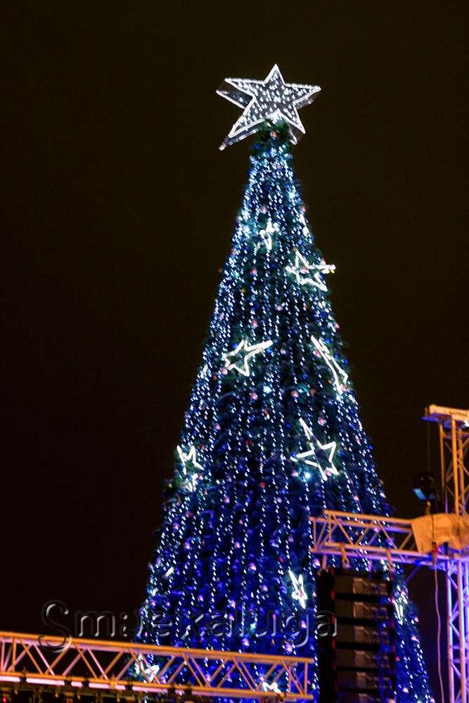 На главной ёлке города калужане встретились со Снеговиком, Карлсоном, Пушкиным и Гоголем