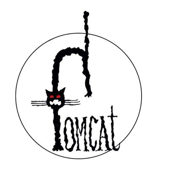 Tomcat в Harat's Pub