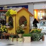 Выставка цветов в калуге