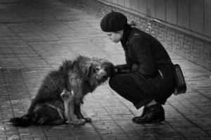 Светлана Масленникова, 15 лет. «Дворняга» (город Орёл, Россия) калуга