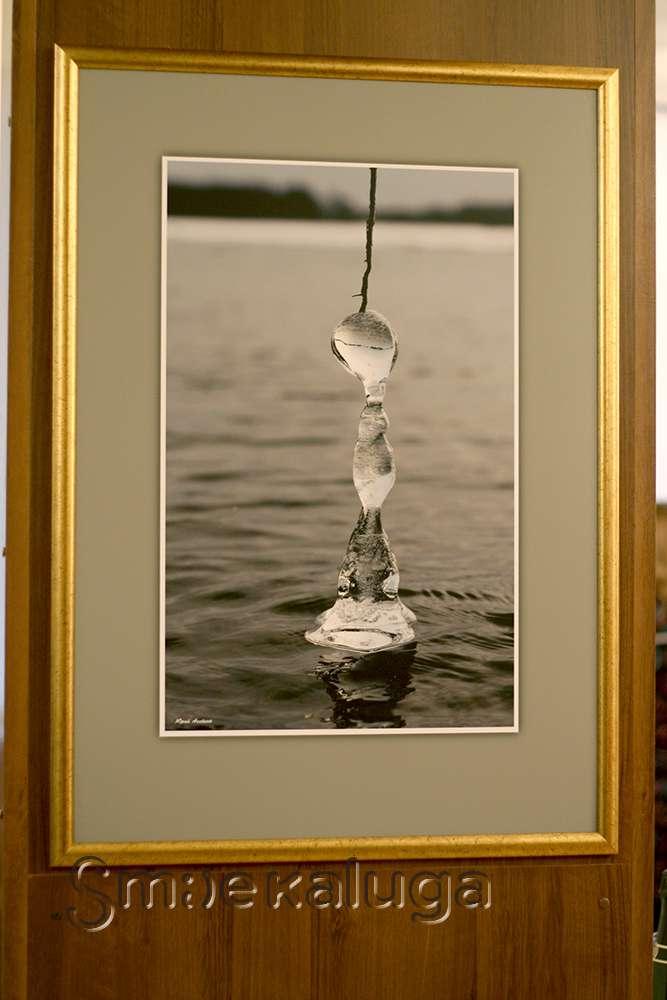 Северное сияние, золотые самородки и обитатели тайги: в фойе Дома музыки открылась вторая фотовыставка Юрия Аксёнова