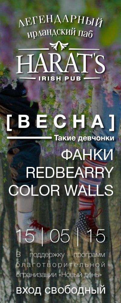 RedBearry | ФАНКИ | Color Walls в Harat's