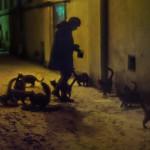"""Светлана Тарасова. Из серии """"За фасадами"""" калуга"""