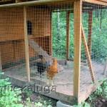 Мини-зоопарк в загородном клубе «Белая Цапля»