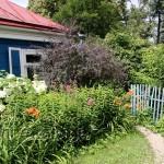 Дом-музей Паустовского