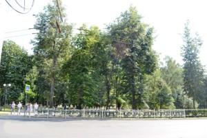 Забор сквер мира в калуге