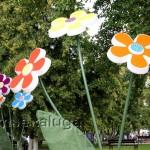 Цветы в сквере Ленина калуга
