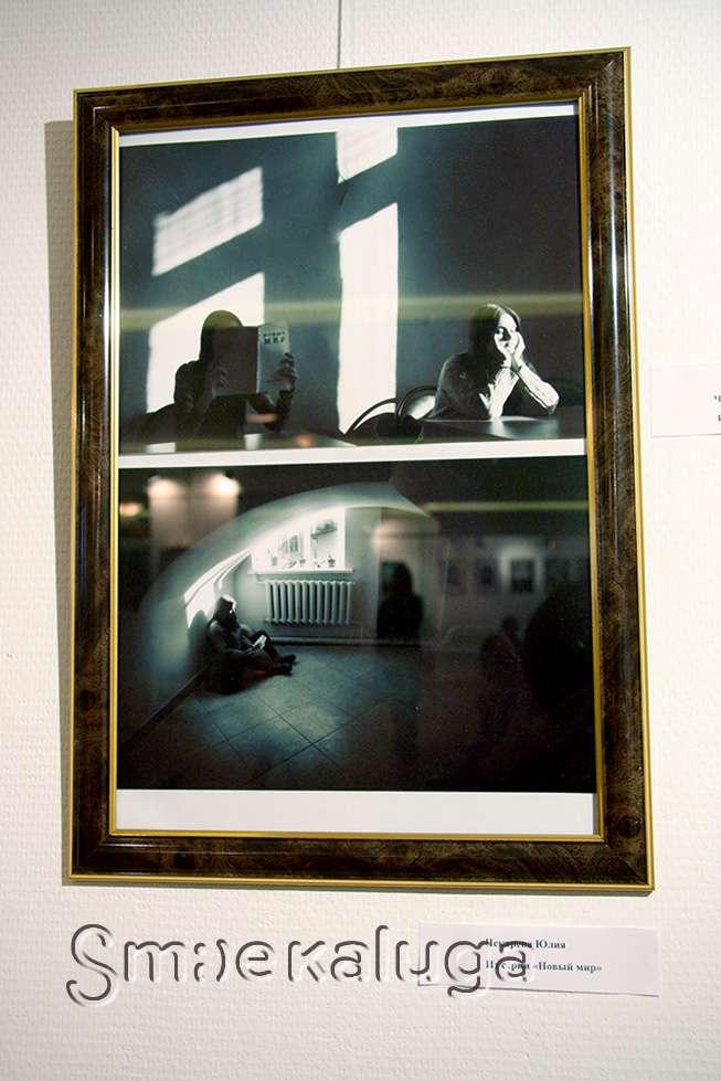 В галерее Калужского Дома музыки представлены лучшие работы фотоконкурса им. Н. Низова