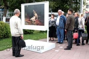 Экспозиция Музея под открытым небом калуга