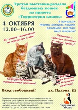 Выставка-раздача бездомных кошек в Городском досуговом центре