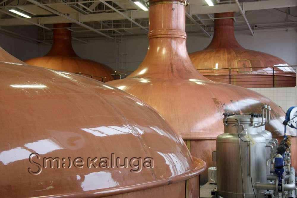 Бесплатные экскурсии по заводу Efes Rus в Калуге (18+)