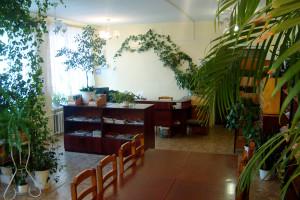 Шопинская сельская библиотека-филиал №27 калуга