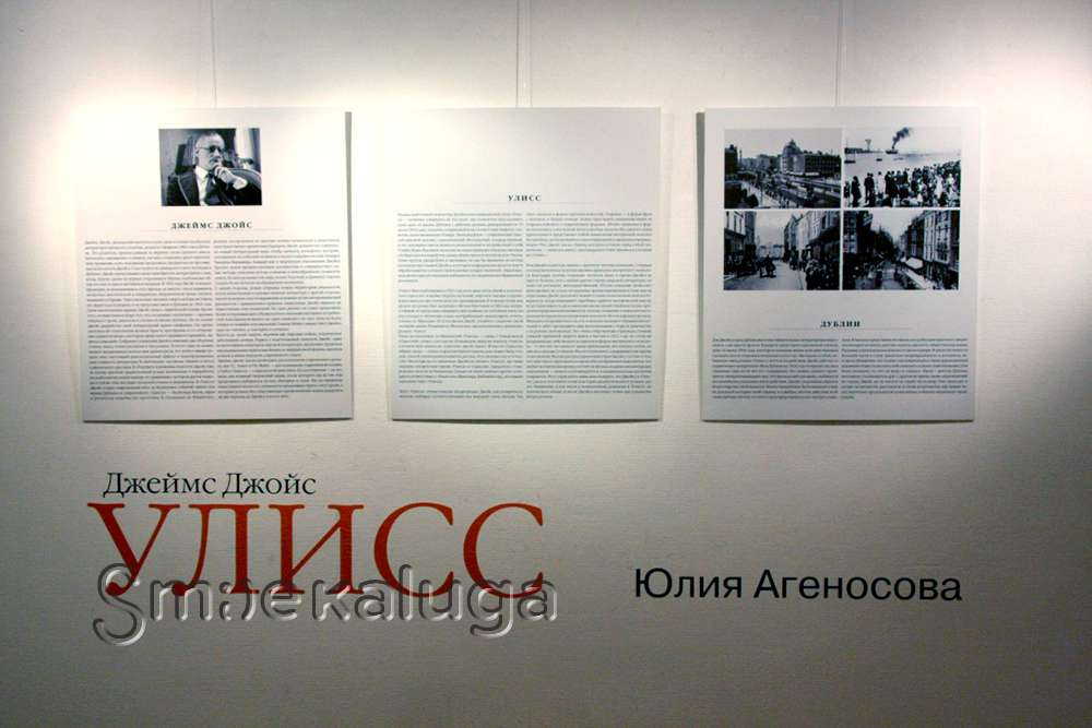 В галерее Дома музыки открыт уникальный арт-проект Юлии Агеносовой «Улисс»