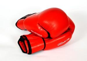 Перчатки для бокса калуга