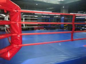 Ринг для бокса. Источник http://baikal24-sport.ru калуга