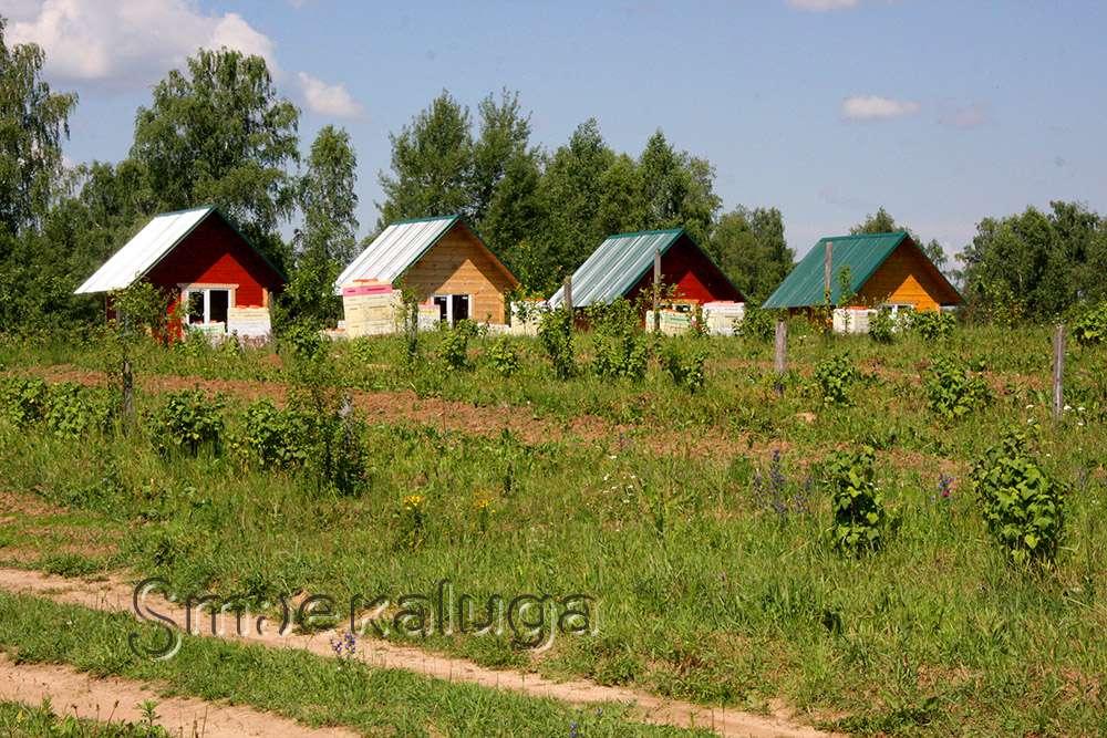 Агротуризм: Экопасека «Пчёлка»: «медовый» отдых и гастрономические открытия в окружении природы Боровского края