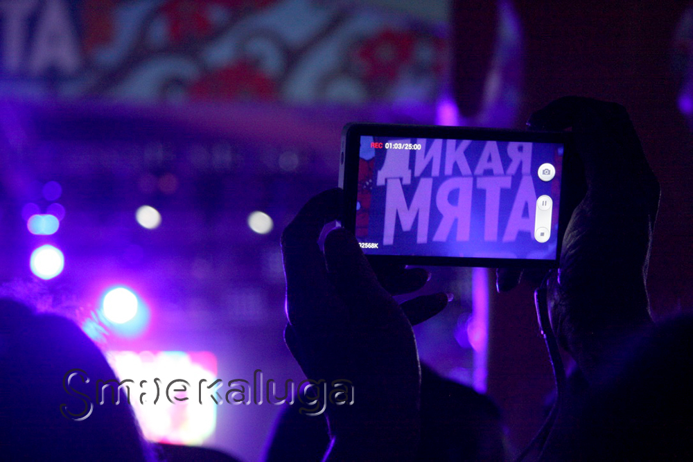 «Дикая Мята» — 2016 собрала более 15 тысяч человек и более 60 музыкальных коллективов