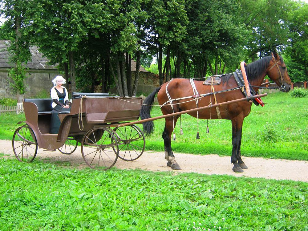 В «Полотняном заводе» теперь можно прокатиться на карете