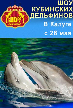 Шоу кубинских дельфинов