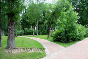 В Центральном парке культуры и отдыха