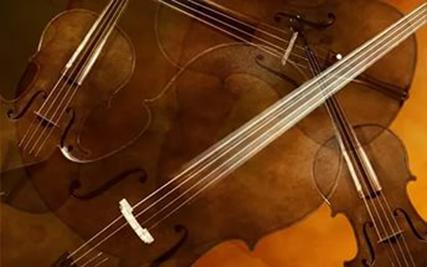 Новый коллектив Калужской областной филармонии, струнный квартет, даст концерт на открытом воздухе