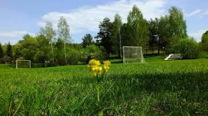 Поле для игры в футбол калуга