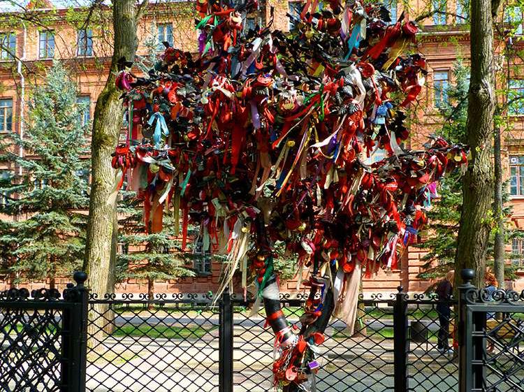 В Калуге установят второе Дерево Счастья
