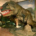 """На выставке """"Планета динозавров"""" калуга"""