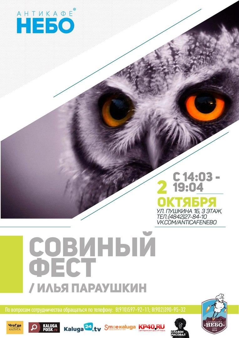 Первый Совиный фестиваль в антикафе «Небо»