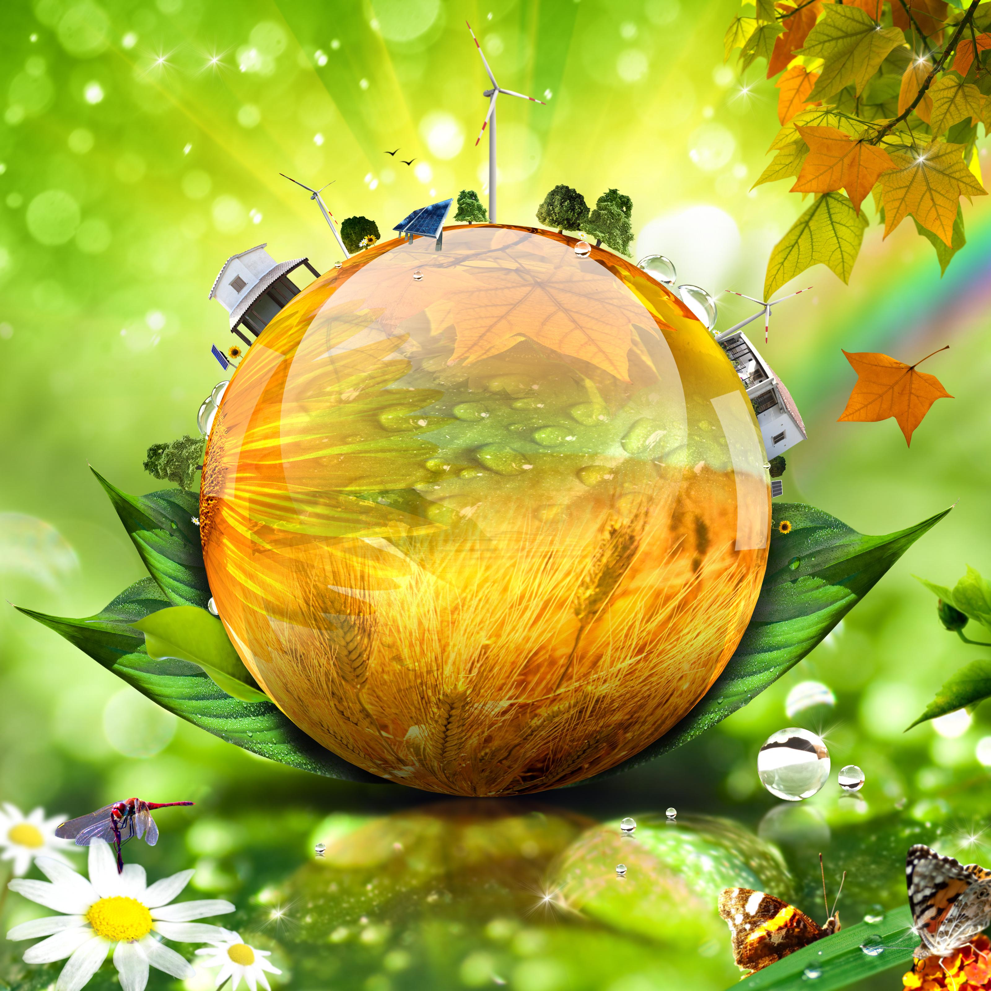 Объявлен творческий конкурс на проектирование композиции, посвящённой природе