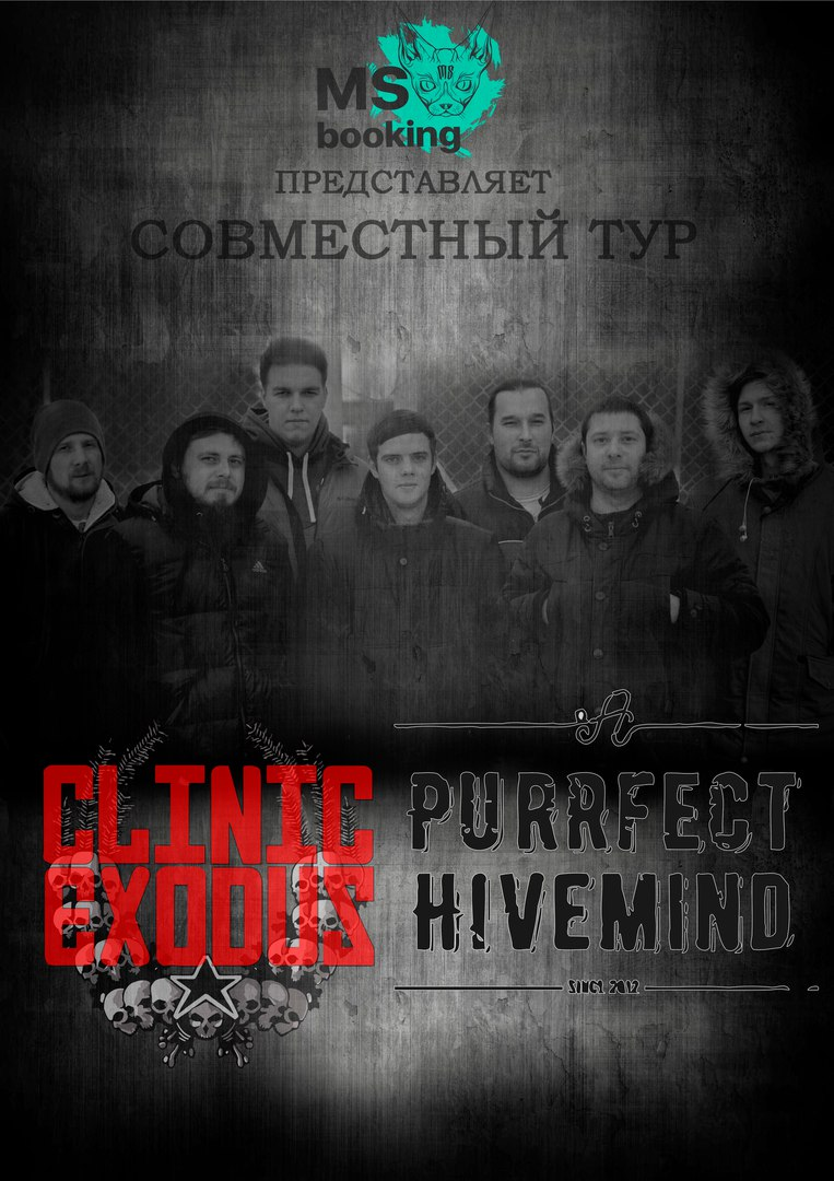 Clinic Exodus & A Purrfect Hivemind в баре Гараж