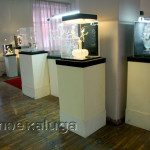 Музей Зеля