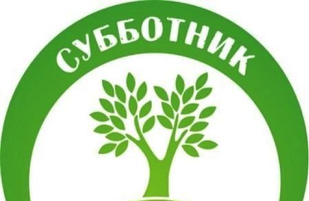 Активисты из «Единой России» убрались в Сосновом бору