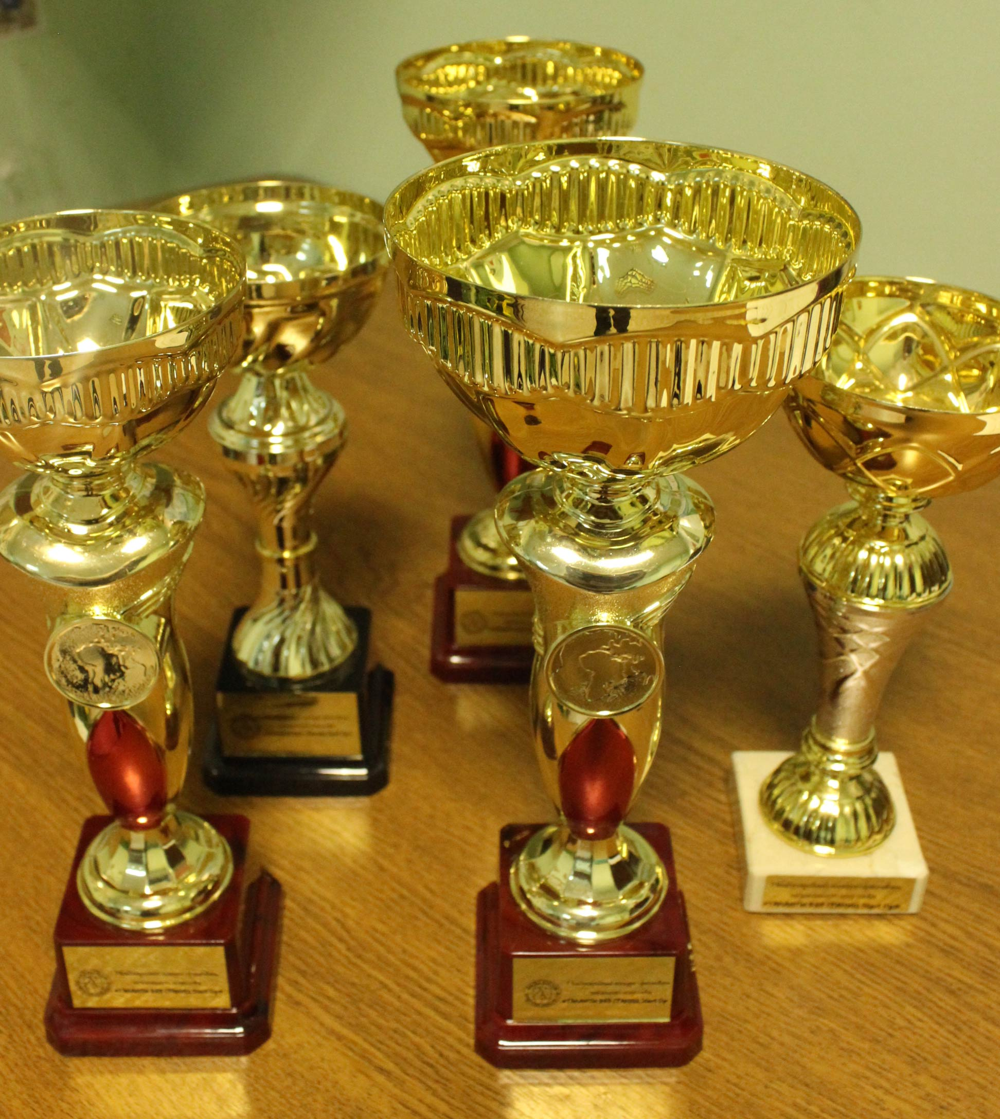Калужский творческий коллектив «Колорит» оценили на международном фестивале