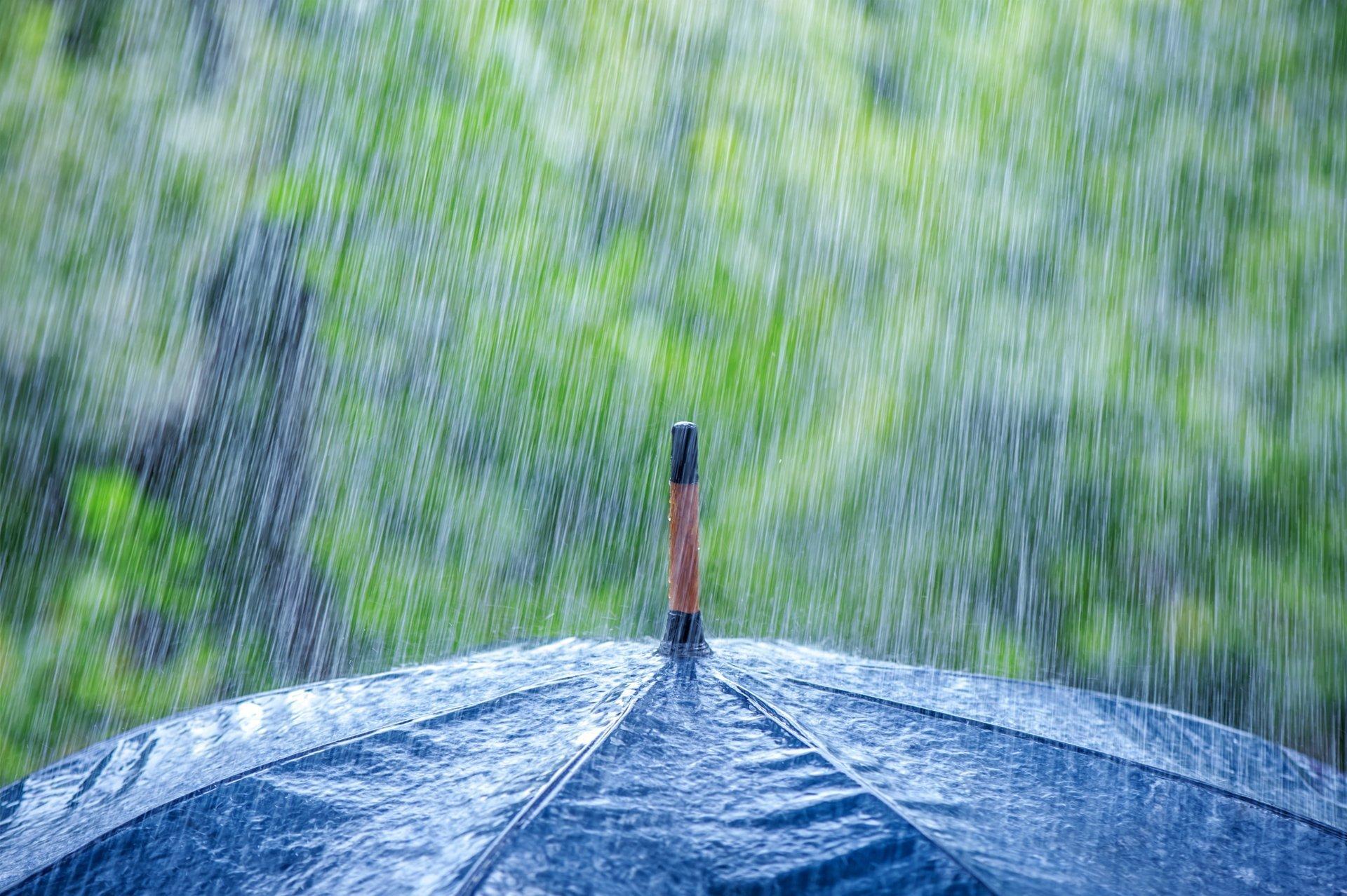 Синоптики обещают дожди до выходных